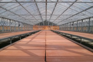 glass greenhouse lucerglass